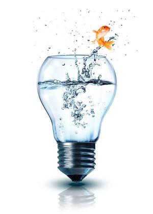 lightbulb-fish